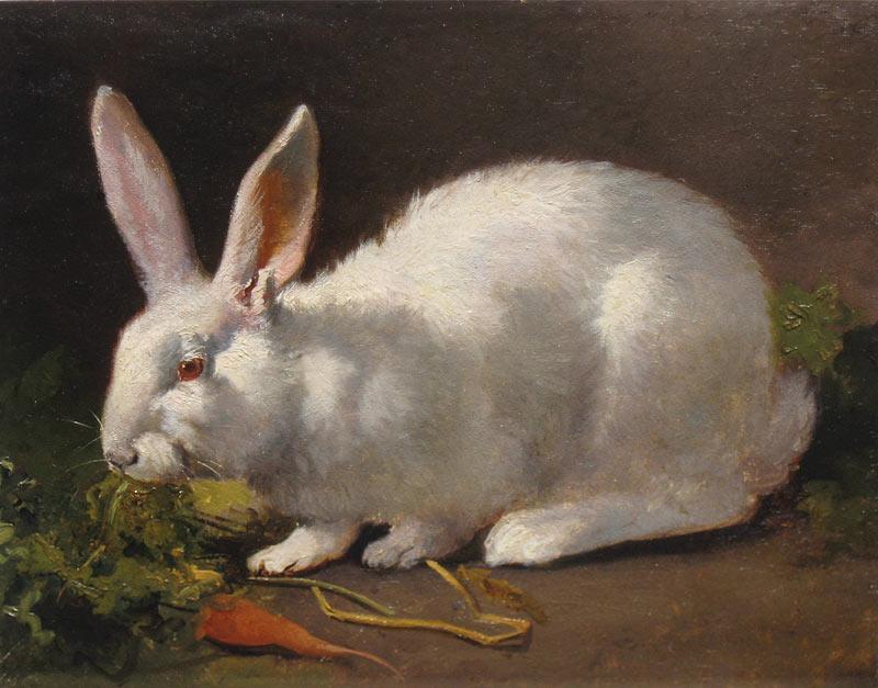 Rabbit (G.J.Bos)