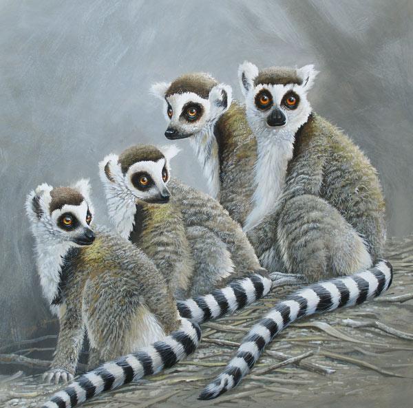Ringstaart aapjes, gouache op schilderkarton, afmeting 35x35cm beeldmaat
