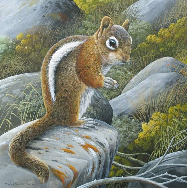 Eekhoorn, gouache op schilderkarton, afmeting 38x38cm beeldmaat
