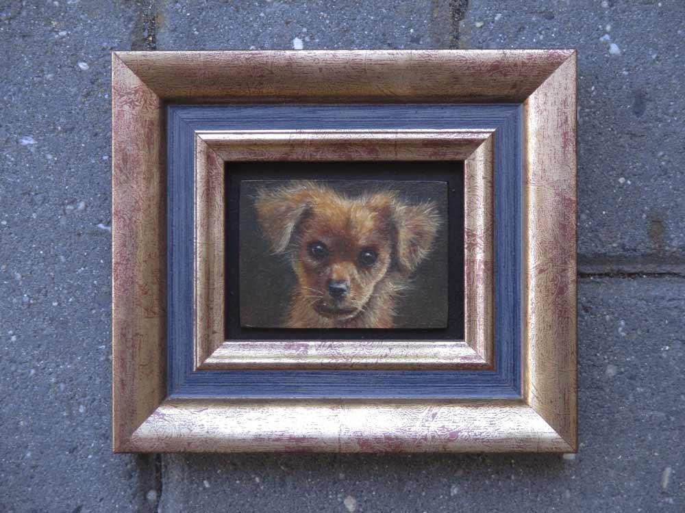 Puppie, olieverf op paneel, afmeting inclusief lijst 13x15cm