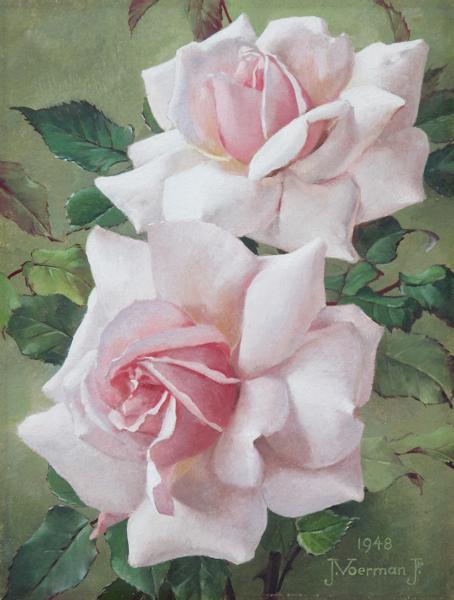 Twee rozen, olieverf op paneel, afmeting 16x21cm