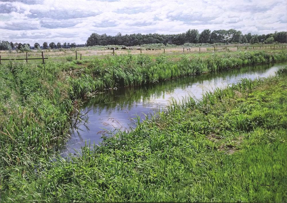 Drenthe, olieverf op linnen, afmeting 50x70cm doekmaat, omgeving Gasselternijvee